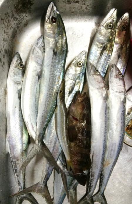 06fishing