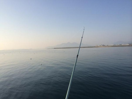 子供でも釣れるファミリーフィッシングと釣果-釣り納め6