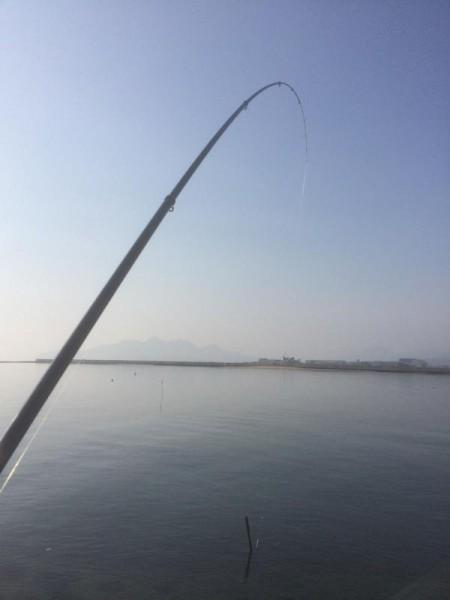 子供でも釣れるファミリーフィッシングと釣果-釣り納め1