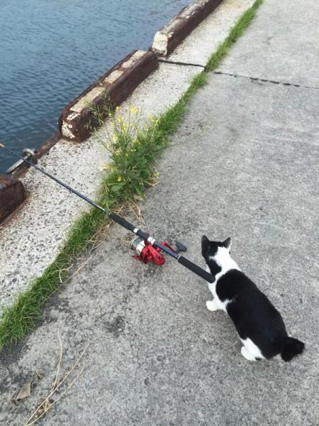 子供でも釣れるファミリーフィッシング-写真 2014-12-15 8 58 42