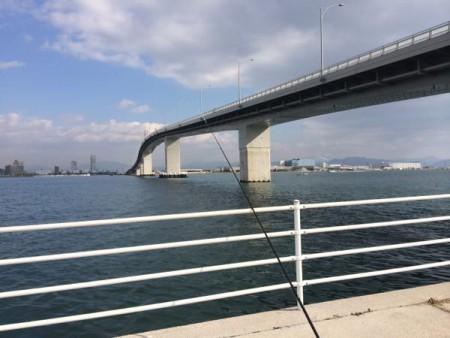 子供でも釣れるファミリーフィッシングと釣果-広島-写真 2015-01-09 12 22 35