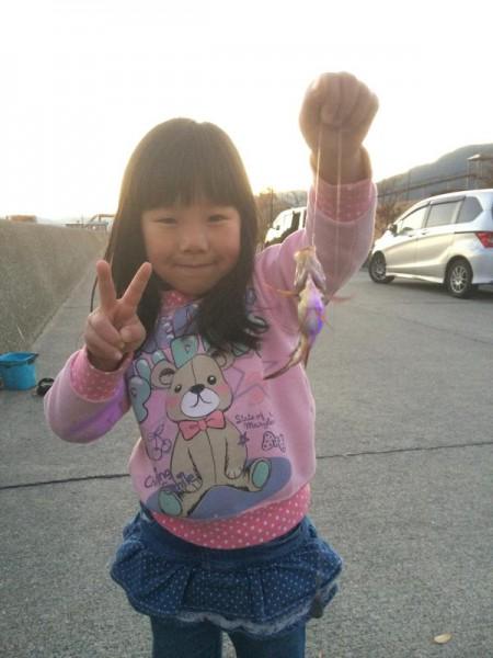 子供でも釣れるファミリーフィッシングと釣果-広島-11