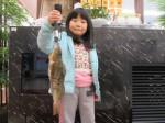 33センチのアイナメが釣れました!広島廿日市港での釣果