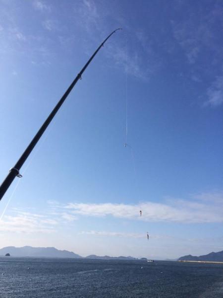子供でも釣れるファミリーフィッシングと釣果-2