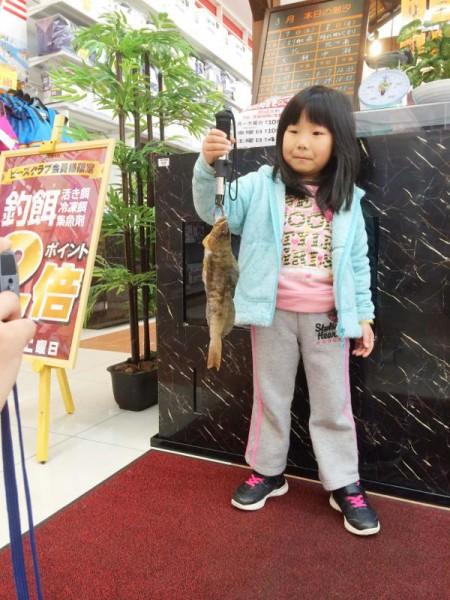 子供でも釣れるファミリーフィッシングと釣果-10