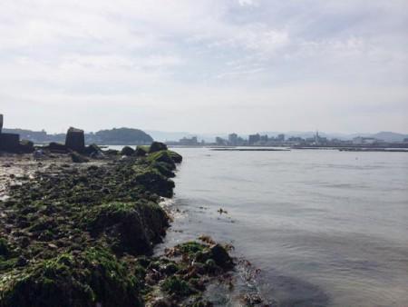 子供でも釣れるファミリーフィッシングと釣果-広島で潮干狩り6