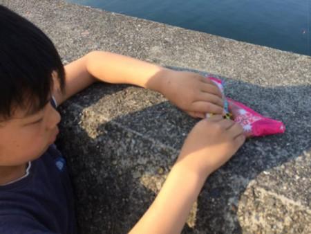 子供でも釣れるファミリーフィッシングと釣果-写真 2015-05-10 17 21 41