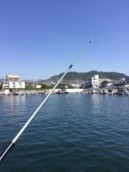 子供でも釣れるファミリーフィッシングと釣果-5