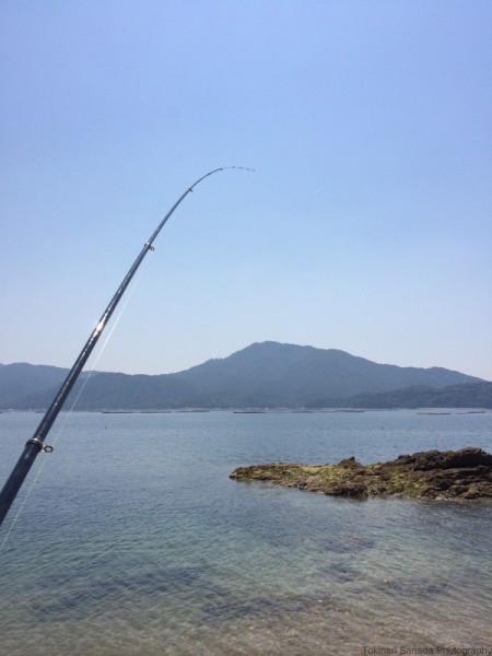 子供でも釣れるファミリーフィッシングと釣果-波止で鱚釣り23