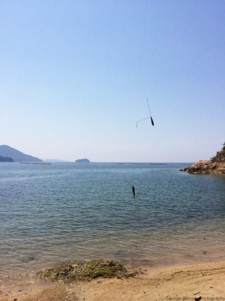子供でも釣れるファミリーフィッシングと釣果-波止で鱚釣り25