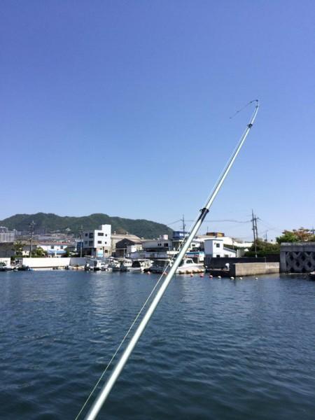 子供でも釣れるファミリーフィッシングと釣果-4