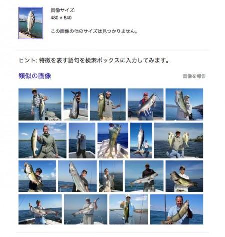 子供でも釣れるファミリーフィッシングと釣果-石垣島_Google 検索