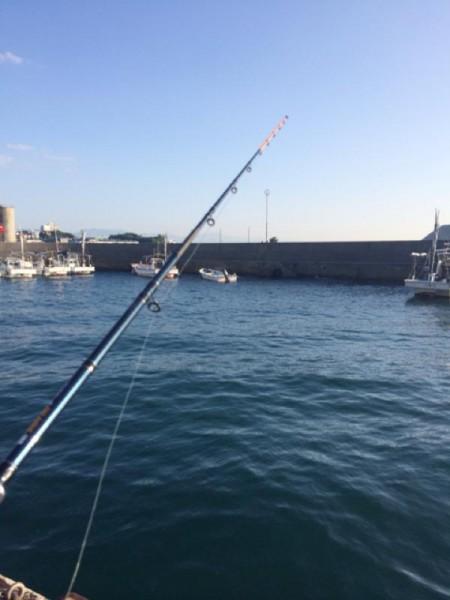 海釣り-子供でも釣れるファミリーフィッシングと釣果-タコ釣り方2