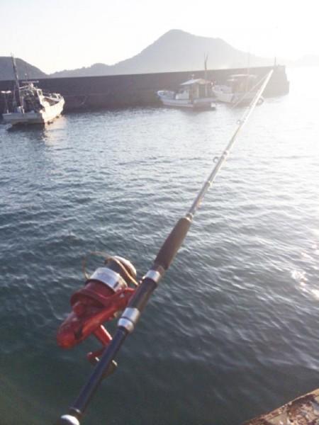 海釣り-子供でも釣れるファミリーフィッシングと釣果-タコ釣り7