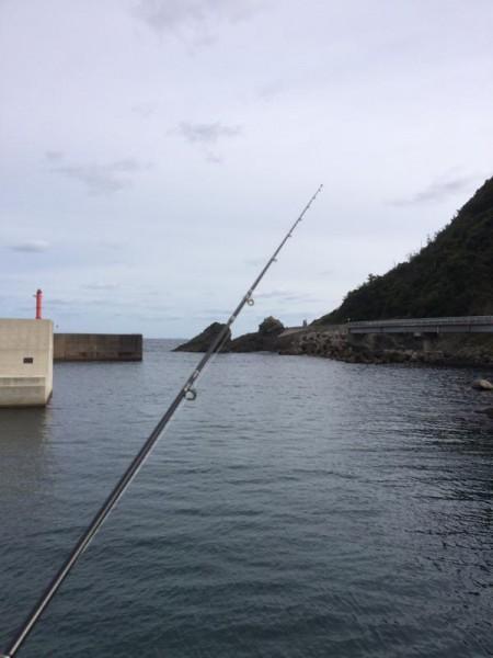 子供でも釣れるファミリーフィッシングと釣果-1